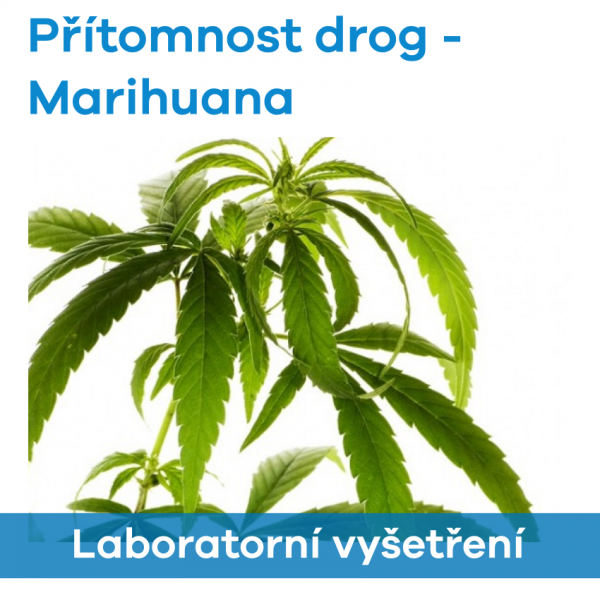 EUC Laboratoře - Přítomnost drog (Marihuana)