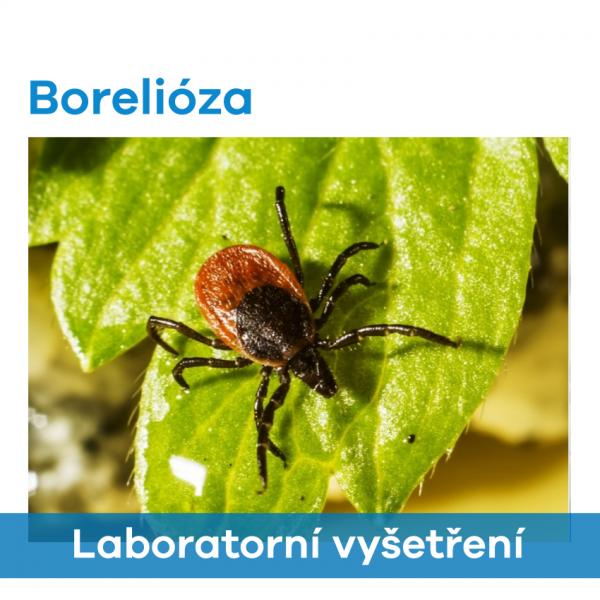 EUC Laboratoře - Borelióza