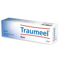Zobrazit detail - Traumeel S mast 50g