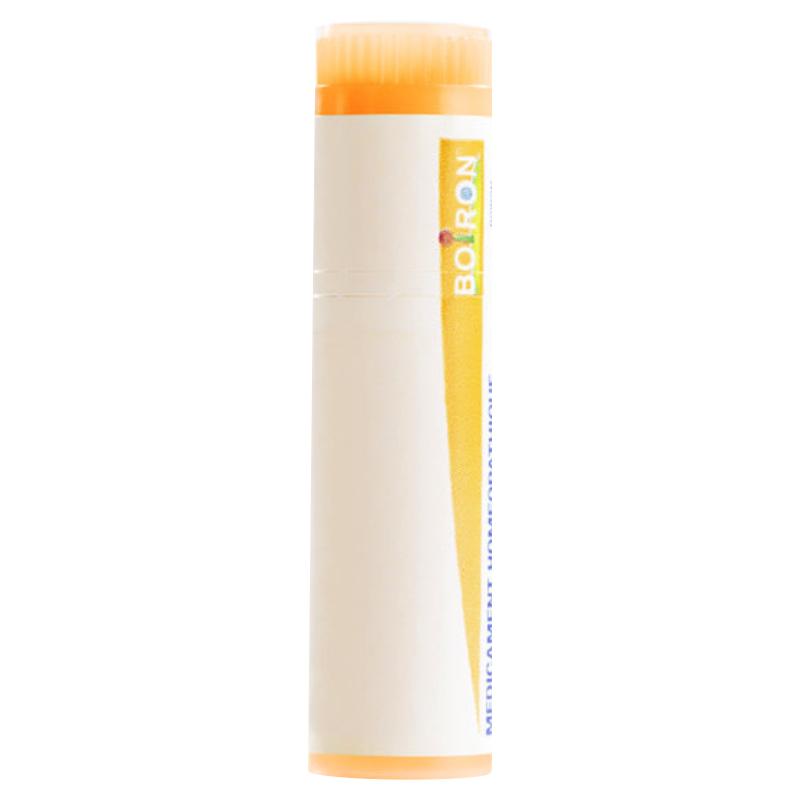 Pollen De Graminees CH15 por.gra.4g