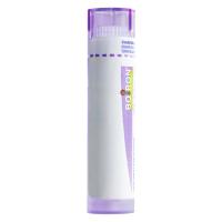 Zobrazit detail - Poumon Histamine CH30 gra. 4g
