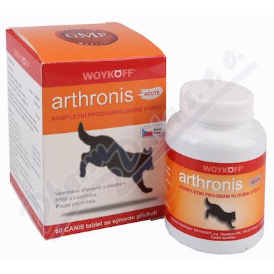 Zobrazit detail - Arthronis ACUTE CANIS (sýrová přích. ) tbl. 60