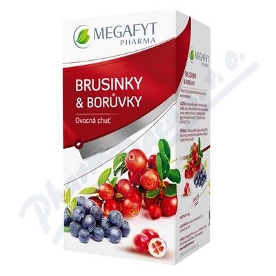 Megafyt Ovocný Brusinky a borůvky 20x2g
