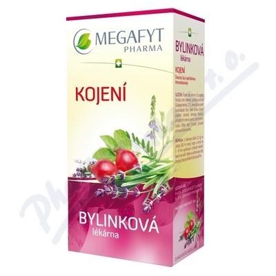 Megafyt Bylinková lékárna Kojení 20x1.5g