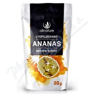 Zobrazit detail - Allnature Ananas sušený mrazem kousky 20 g