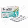 Boswellia s chondroitinem a kolagenem tbl.30